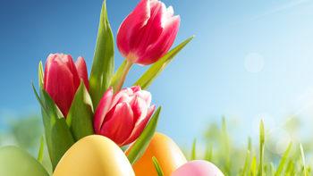 Permalink auf:Ostersamstags-Degustation