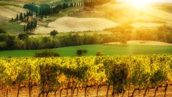 Permalink auf:Viva la Romagna!